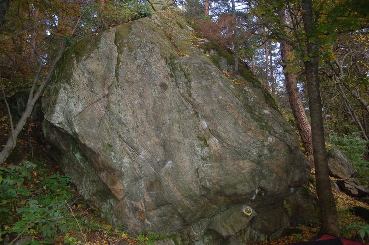 Harjulan kivi