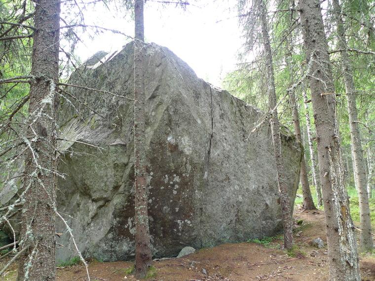 Skogen/Atriumet