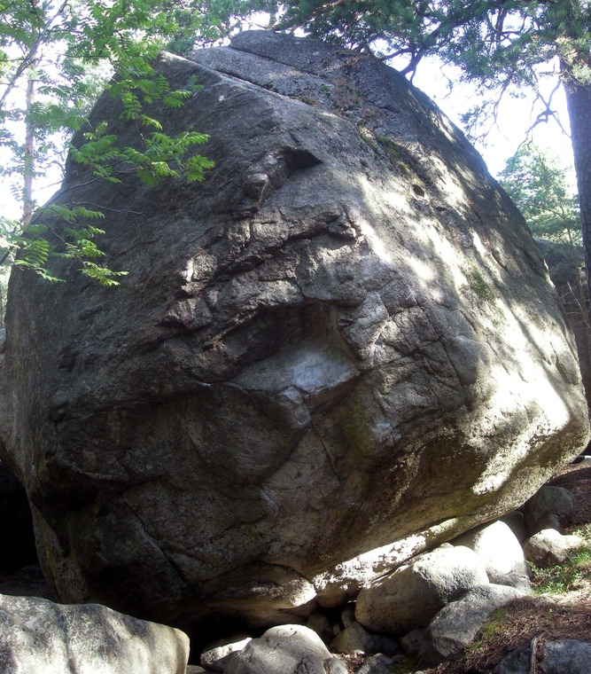 Joogo-kivi