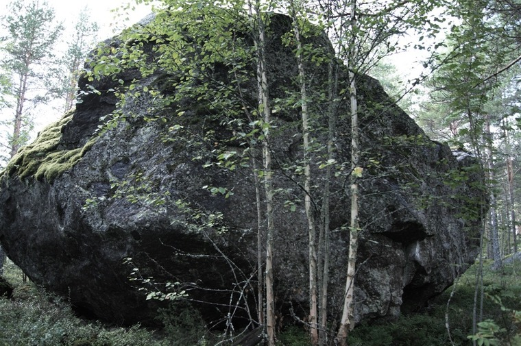 Iso kivi