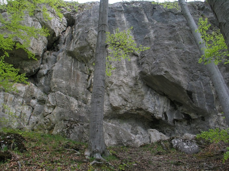 West wall (Platňa)