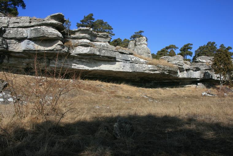 Hideviken-Taket