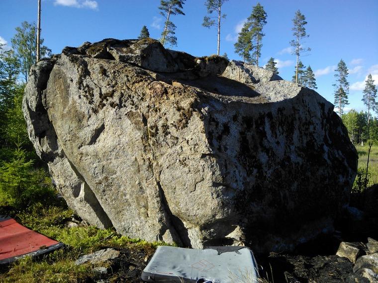 Palanut kivi