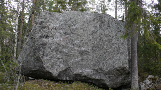 Large a8b9c2d832f1