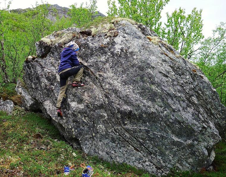 4-steinen