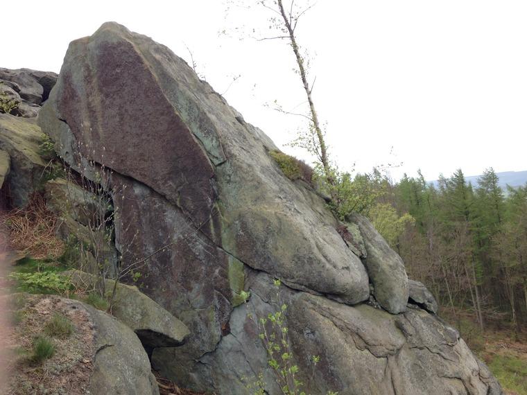 Larchbow Wall