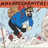 Mark Whale