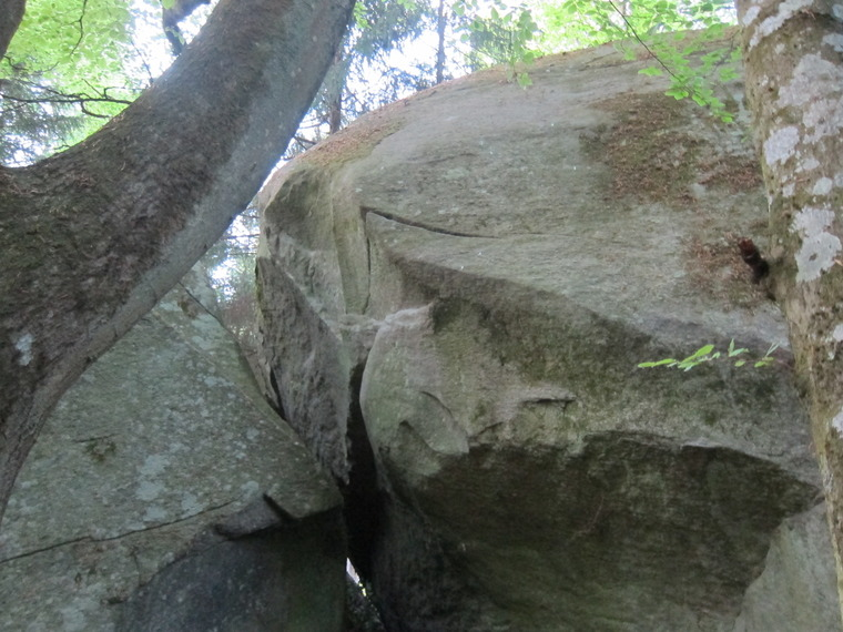 Glömda stenarna