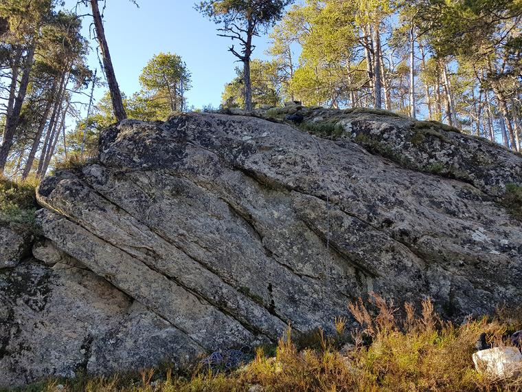 Fastfôr steinen