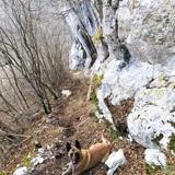 Đole Alp