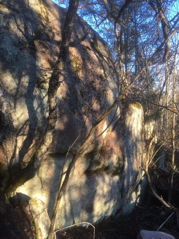 Rotten Tree Boulder