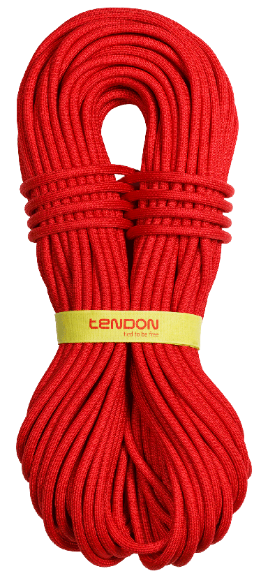 Tendon Master PRO 9.2, Tendon
